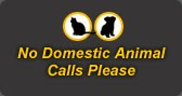 No domestic animal calls please